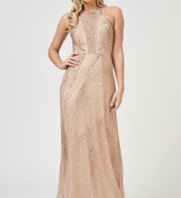 Raleigh Maxi in Champagne